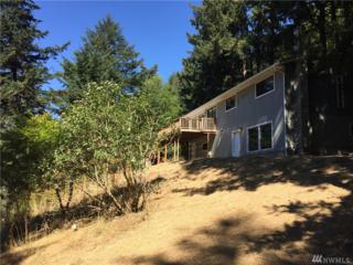 162 Discovery Wy, Orcas Island, WA 98245 (#1018980) :: Ben Kinney Real Estate Team