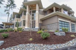 916 139th St Ct NW, Gig Harbor, WA 98332 (#1029857) :: Ben Kinney Real Estate Team