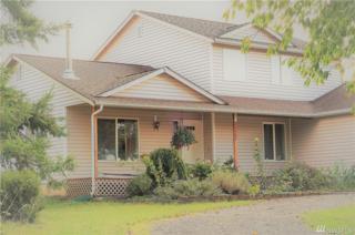 18502 Forstrom Rd SW, Rochester, WA 98579 (#1085953) :: Ben Kinney Real Estate Team