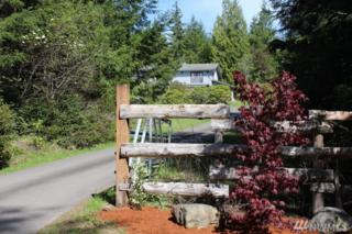 2330 Lorelei Lane NW, Seabeck, WA 98380 (#1117591) :: Better Homes and Gardens Real Estate McKenzie Group