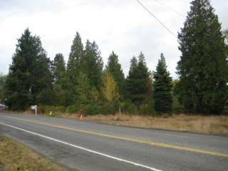 29006 Military Rd S, Federal Way, WA 98003 (#415141) :: Ben Kinney Real Estate Team