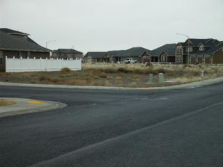 601 N Bluff West Dr, Moses Lake, WA 98837 (#595679) :: Ben Kinney Real Estate Team