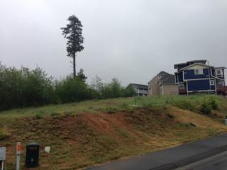 1135 Grays Pointe Lane, Aberdeen, WA 98520 (#640731) :: Ben Kinney Real Estate Team