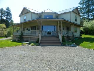 5 Windmill Mtn Rd., Tonasket, WA 98855 (#785776) :: Ben Kinney Real Estate Team