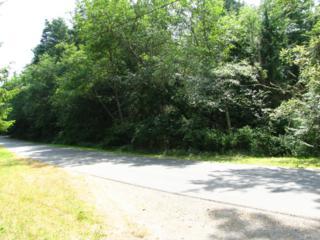 0 Johnson Ave, Port Townsend, WA 98368 (#809472) :: Ben Kinney Real Estate Team