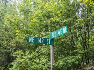 141-XX 320 Ave NE, Duvall, WA 98019 (#824987) :: Ben Kinney Real Estate Team
