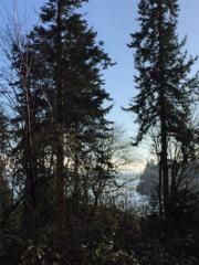 0-XXX Division Ave NE, Suquamish, WA 98392 (#846529) :: Ben Kinney Real Estate Team