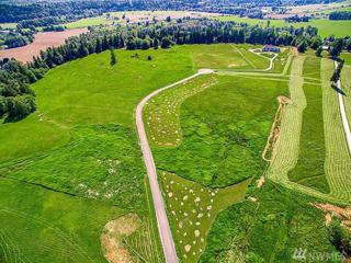 3-XX 236th Lot 4 St NW, Stanwood, WA 98292 (#941760) :: Ben Kinney Real Estate Team
