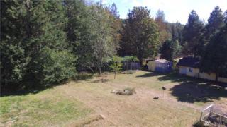 293193 Us Hwy 101, Quilcene, WA 98376 (#965879) :: Ben Kinney Real Estate Team