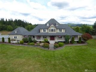 22397 Bulson Road, Mount Vernon, WA 98274 (#978235) :: Ben Kinney Real Estate Team