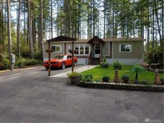 670 NE Haven Lake Dr, Tahuya, WA 98588 (#1034636) :: Ben Kinney Real Estate Team