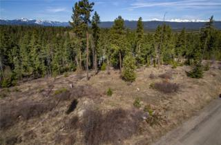 0-Lot 1 Mahonia Dr, Cle Elum, WA 98922 (#616663) :: Ben Kinney Real Estate Team