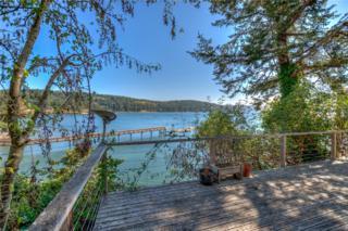 71 Olga Park Lane, Orcas Island, WA 98279 (#634854) :: Ben Kinney Real Estate Team