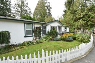 41667 S Skagit Hwy, Concrete, WA 98237 (#1036791) :: Ben Kinney Real Estate Team