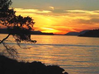 0-xxx Reef Island, Orcas Island, WA 98243 (#744605) :: Ben Kinney Real Estate Team