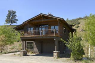 128 North Village Rd, Winthrop, WA 98862 (#778701) :: Ben Kinney Real Estate Team