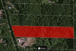 1 Tahuya River Rd, Tahuya, WA 98588 (#787211) :: Ben Kinney Real Estate Team