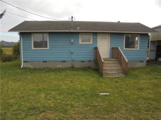 1141 Lindgren Rd, Grayland, WA 98547 (#811996) :: Ben Kinney Real Estate Team
