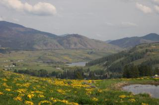 54 Mule Deer Trail, Winthrop, WA 98862 (#682412) :: Ben Kinney Real Estate Team