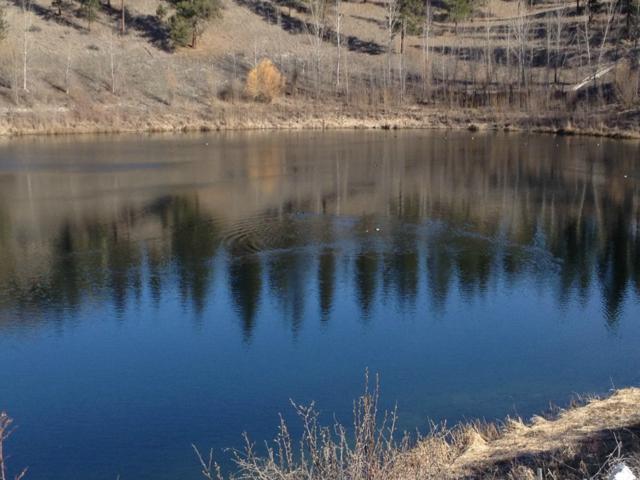 1 Mist Lake Road, Tonasket, WA 98855 (#750388) :: TRI STAR Team | RE/MAX NW