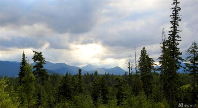 0-Lot 6 Mahonia Dr, Cle Elum, WA 98922 (#1002430) :: Real Estate Solutions Group
