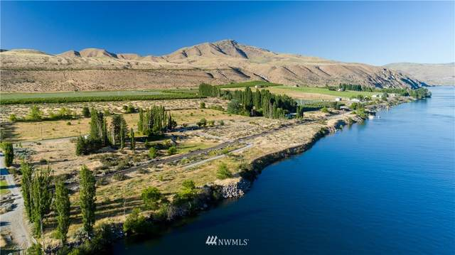 424 Stayman Flats Road, Chelan, WA 98816 (#1006563) :: Canterwood Real Estate Team