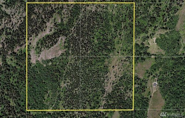 11111 Aeneas Mtn Rd, Tonasket, WA 98855 (#1010819) :: Ben Kinney Real Estate Team