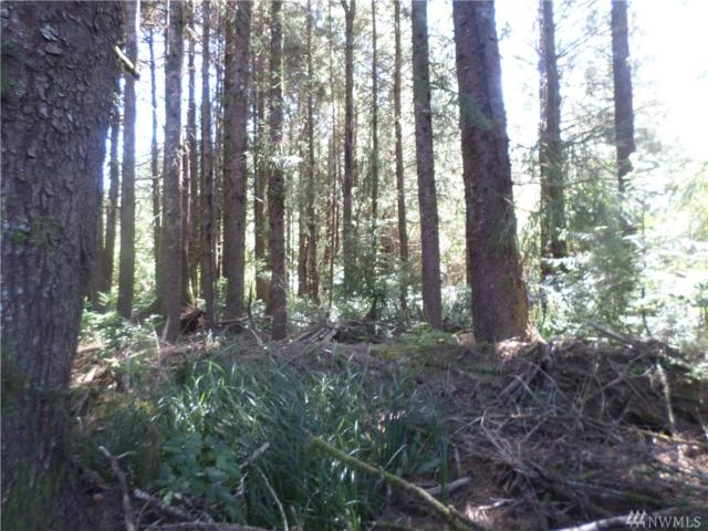 50 Tax Lot, Hoquiam, WA 98550 (#1018334) :: Real Estate Solutions Group
