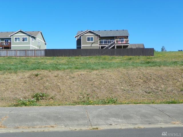 535 Meadow Lp, Montesano, WA 98563 (#1018640) :: Ben Kinney Real Estate Team