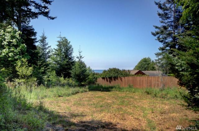 3272 Cape George Rd, Port Townsend, WA 98368 (#1019257) :: Ben Kinney Real Estate Team