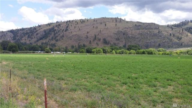 1-Lot 1 Hild Short Plat #1 Lane, Okanogan, WA 98840 (#1020432) :: Ben Kinney Real Estate Team