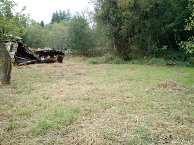 244 Hubbard Rd, Boistfort, WA 98538 (#1024739) :: Ben Kinney Real Estate Team