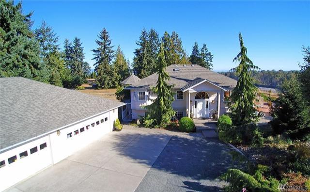 222 Fox Point Rd, Port Angeles, WA 98363 (#1033265) :: Ben Kinney Real Estate Team