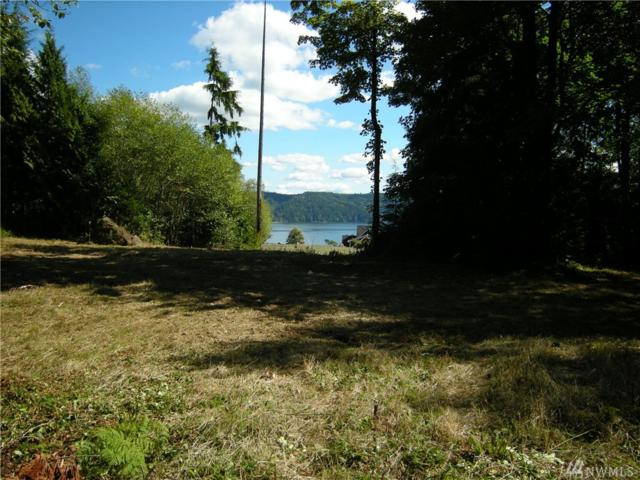 0 Lot 11 Luci's Wy, Hoodsport, WA 98548 (#1036908) :: Ben Kinney Real Estate Team
