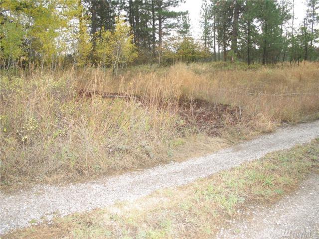 0-XXX W Bluebird Lane, Spokane, WA 99224 (#1040874) :: Ben Kinney Real Estate Team
