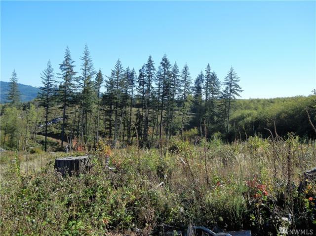 0 NE Hinness Rd, Brush Prairie, WA 98606 (#1042140) :: Ben Kinney Real Estate Team
