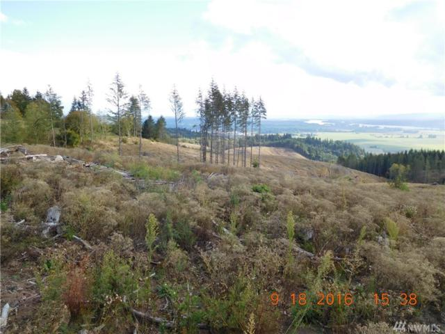 0 Green Mt Rd, Woodland, WA 98674 (#1042231) :: Ben Kinney Real Estate Team