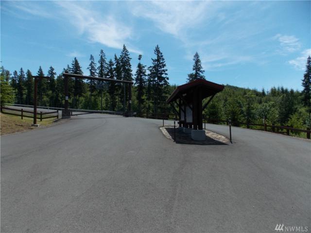 0-Lot R Ridgewood, Castle Rock, WA 98611 (#1044627) :: Ben Kinney Real Estate Team