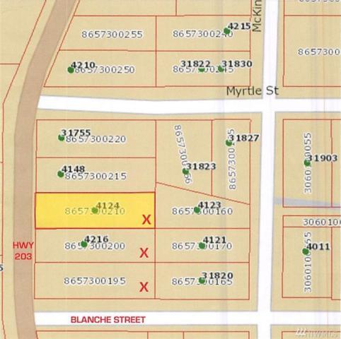 4218 Tolt Ave, Carnation, WA 98014 (#1045470) :: Ben Kinney Real Estate Team