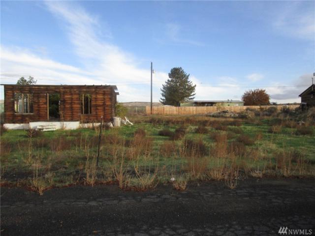 732 Woodland St, Soap Lake, WA 98851 (#1045923) :: Ben Kinney Real Estate Team