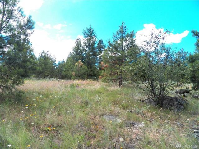 0-tbd W Cayuse Mt Rd, Tonasket, WA 98855 (#1047252) :: Ben Kinney Real Estate Team