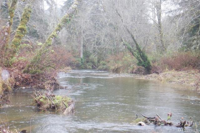 77 Salmon Creek Rd, Naselle, WA 98638 (#1054315) :: Ben Kinney Real Estate Team