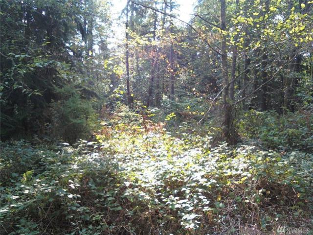 0 W Spring Lake Dr SE, Renton, WA 98058 (#1056624) :: Ben Kinney Real Estate Team