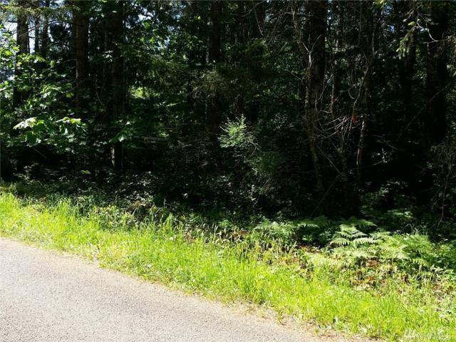 0 Raubuck Rd, Napavine, WA 98596 (#1057505) :: Ben Kinney Real Estate Team