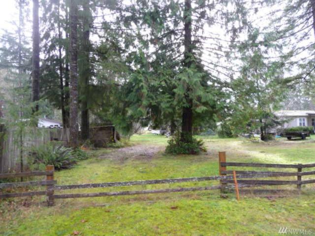 46383 Baker Loop Rd, Concrete, WA 98237 (#1059457) :: Ben Kinney Real Estate Team