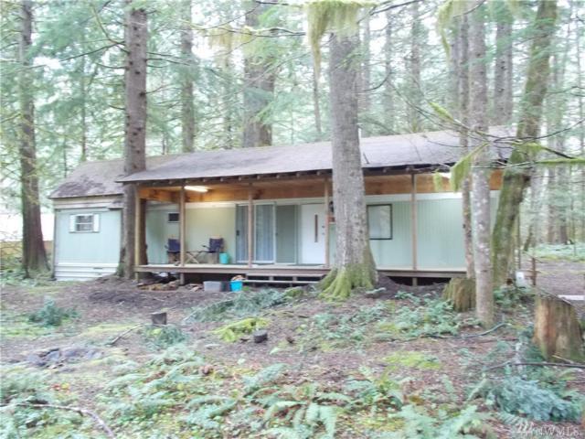 56620 381st Av Ct E, Ashford, WA 98304 (#1060487) :: Ben Kinney Real Estate Team