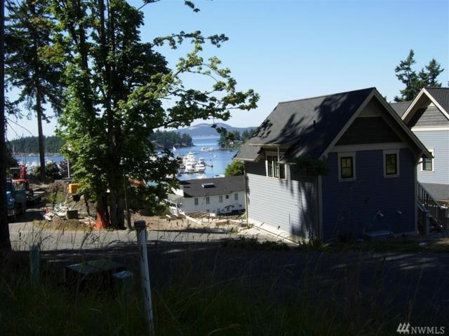 82 Ada's Alley Lot 50, San Juan Island, WA 98250 (#1061921) :: Ben Kinney Real Estate Team