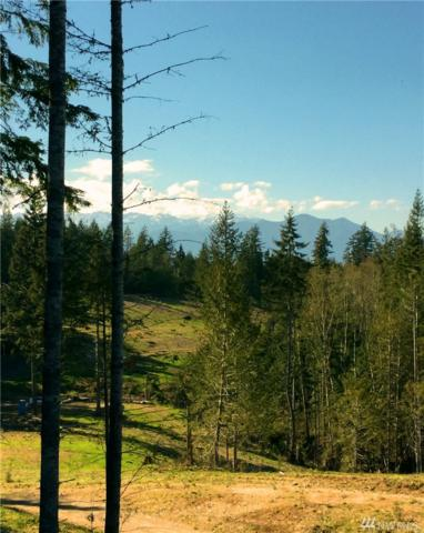 8451 Coyle Rd, Quilcene, WA 98376 (#1063343) :: Homes on the Sound