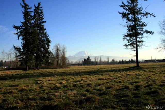40301 244th Ave, Enumclaw, WA 98022 (#1063345) :: Ben Kinney Real Estate Team