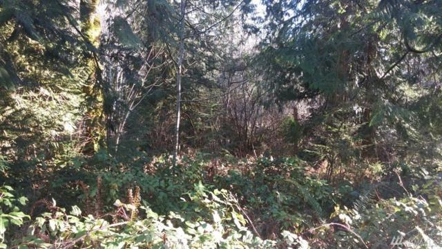 0 SE Lynch Rd, Shelton, WA 98584 (#1063678) :: Ben Kinney Real Estate Team